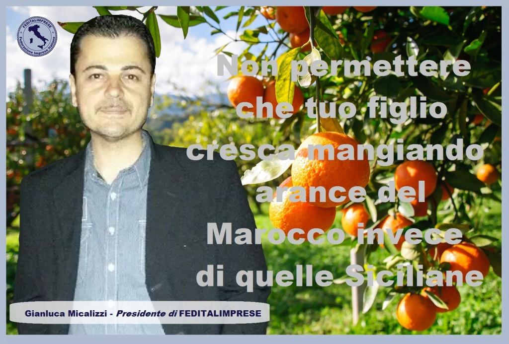 arance  FEDITALIMPRESE 1